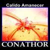 Thumbnail FLP CONATHOR - Calido Amanecer