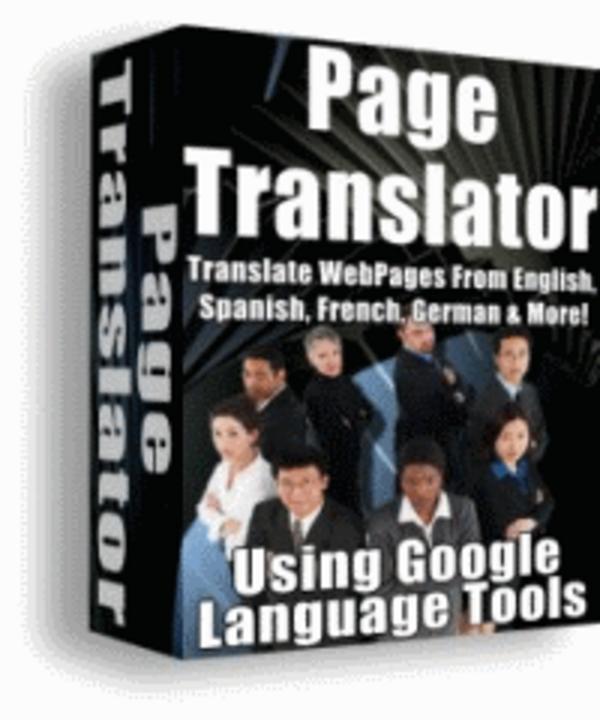 Pay for website translator