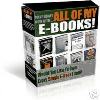 Thumbnail EVERY EBOOK I SELL.zip
