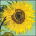Thumbnail cross stitch pattern sunflower by Vincent Van Gogh.pdf