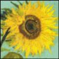 Thumbnail cross stitch pattern sunflower by Vincent Van Gogh.pdf