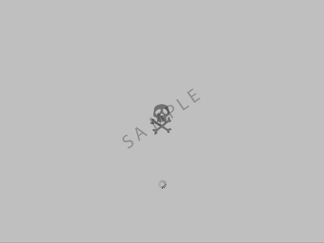 Pay for OS X Leopard boot image - Skull