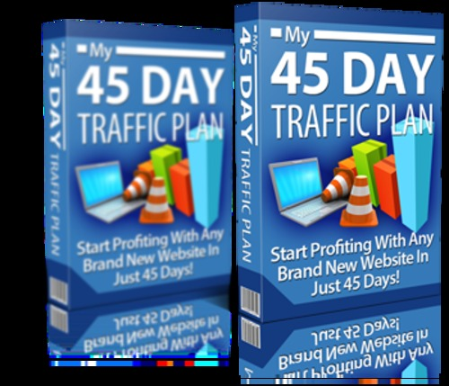 Pay for 45 Day Traffic Plan Complete Traffic Generation Workshop