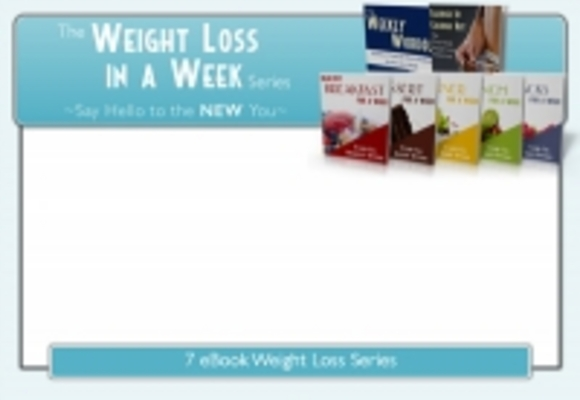 Pay for Weight Loss System Expert (PLR)