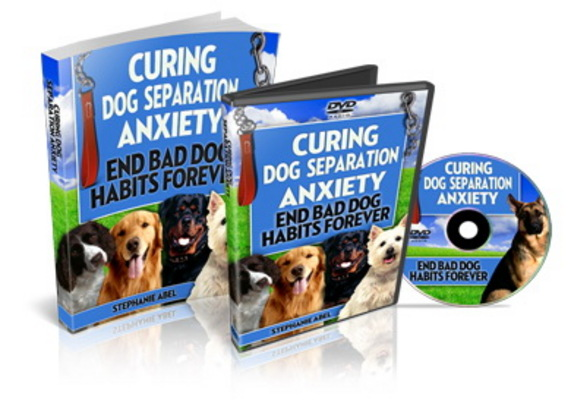 Pay for Curing Dog Separation Anxiety (PLR)
