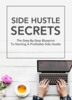 Thumbnail Side Hustle Secrets