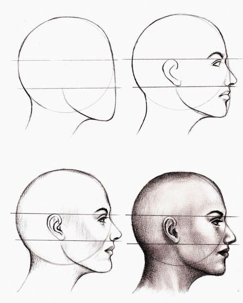Pay for guide how to draw a person faceanime step by step