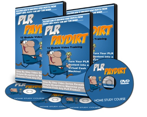 Pay for PLR Paydirt Video Tutorials with Resell Rights