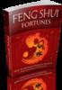 Thumbnail Feng Shui Fortunes