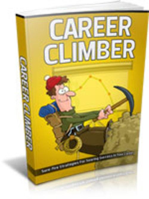 Pay for Career Climber