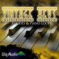 Thumbnail Vintage Keys Rhodes And Piano Loops -Acid/Apple/REX