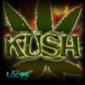 Thumbnail Kush - Acid/Apple/REX