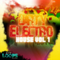 Thumbnail Dirty Electro House Vol.1 - Acid/Apple/REX