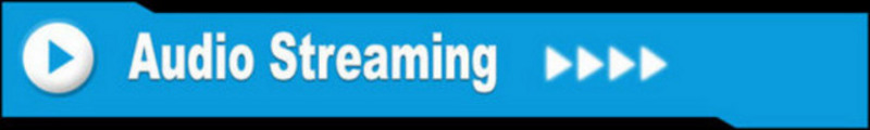 Thumbnail Audio Streaming Niche - Made For Adsense Web Pages