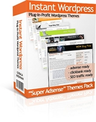 Pay for 30 Instant WordPress Themes with Master Resale Rights