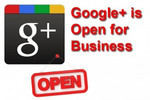 Thumbnail Google + Business Blueprint with PLR