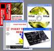 Thumbnail Graphic Firesale