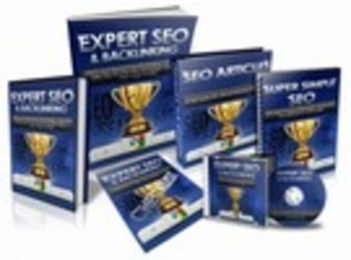 Pay for Expert SEO and Backlinking with Resell Rights