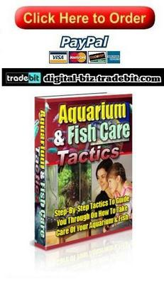 Pay for How To Take Care Of Your Aquarium & Fish
