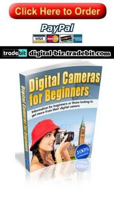 Pay for Digital Cameras For Beginners