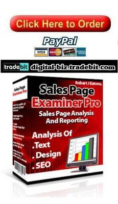 Pay for Sales Page Examiner