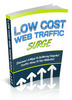 Thumbnail Low Cost Web Traffic Surge  with (PLR)