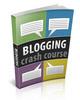 Thumbnail Blogging Crash Course With (PLR)