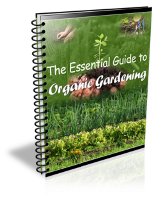 Pay for The Essential Guide to Organic Gardening(PLR)