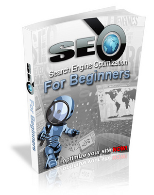 Pay for NEW 2010 SEO for Beginners (MRR)