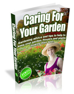 Pay for Caring For Your Garden (MRR)