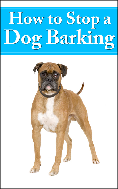 how to get a dog to stop barking