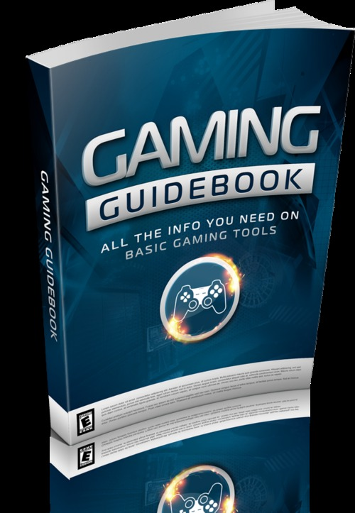 Pay for Gaming Guidebook