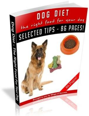 Pay for Dog Diet The Right Food For Your Dog (MRR)