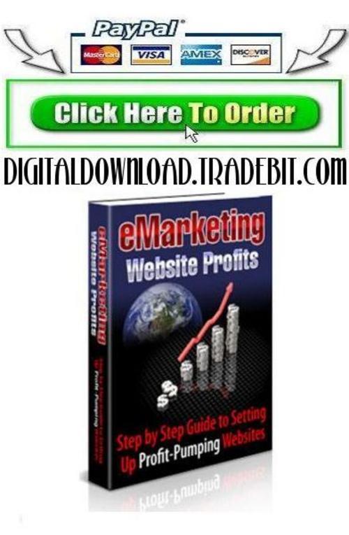 Pay for E-Marketing Website Profits