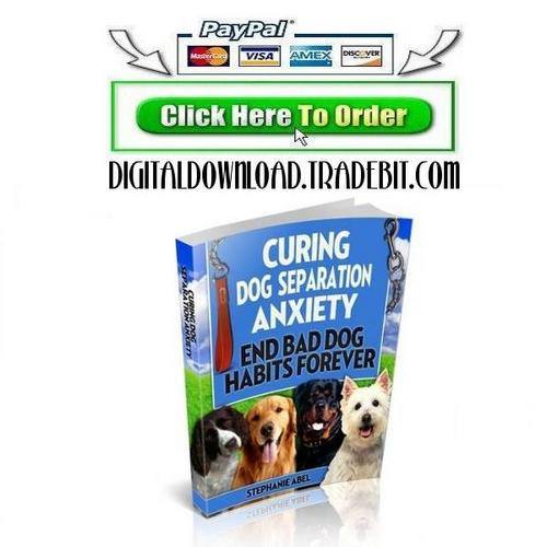 Pay for Curing Dog Separation Anxiety