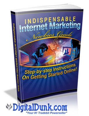 Pay for Indispensable Internet Marketing Newbies Guide