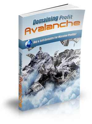 Pay for Domaining Profits Avalanche
