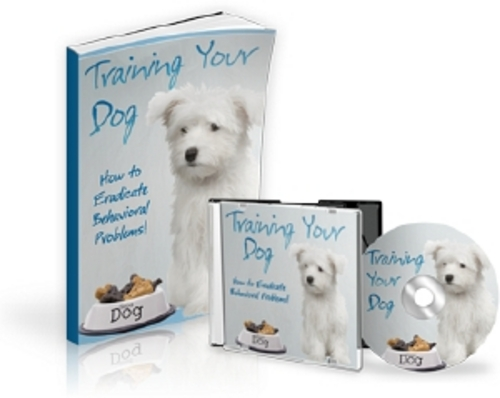 Pay for Training Your Dog Audio Ebook - MRR