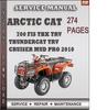 Thumbnail Arctic Cat 700 FIS TBX TRV Thundercat TRV Cruiser Mud Pro 2010 Factory Service Repair Manual Download