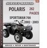 Thumbnail Polaris Sportsman 700 2002 - 2003 Factory Service Repair Manual Download