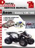 Thumbnail Aeon Cobra 125 180 Factory Service Repair Manual