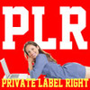 Thumbnail 2000 over PLR Articles on Business Work Private Label Rights