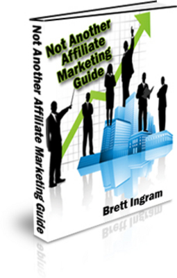 Pay for *NEW* Not Another Affiliate Marketing Guide With PLR