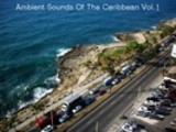 Thumbnail Ambient Sounds Of The Caribbean - Vol. 1, Track 14