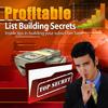 Thumbnail Profitable-List-Building-Secrets Book With MRR