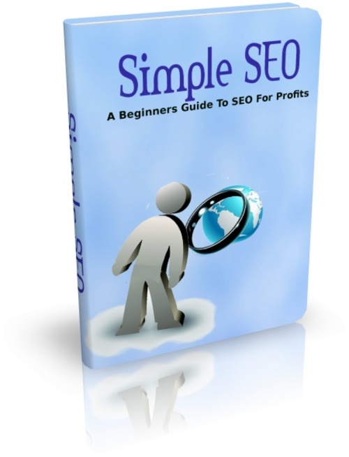 Pay for Simple SEO