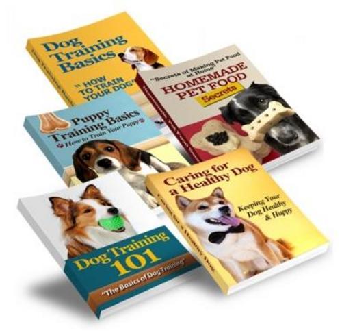 Pay for Dog Training niche Bundle