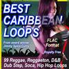 Thumbnail BEST CARIBBEAN LOOPS Flac Format.zip