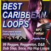 Thumbnail BEST CARIBBEAN LOOPS MP3 format.zip