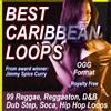 Thumbnail BEST CARIBBEAN LOOPS OGG.zip